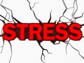 Stress, une réponse?